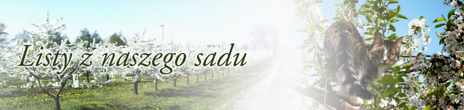 listy z naszego sadu